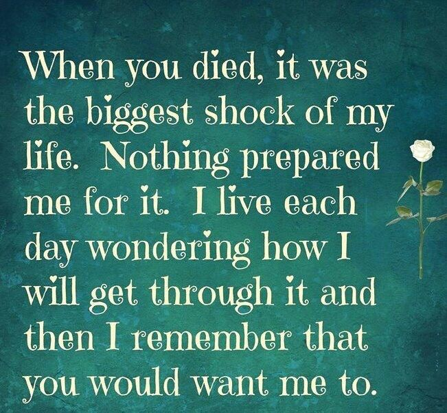 When you died, it was the biggest shock of my life. Nothing prepared me for it. I live each day wondering how I will get through it & then I remember that you would want me to do that.