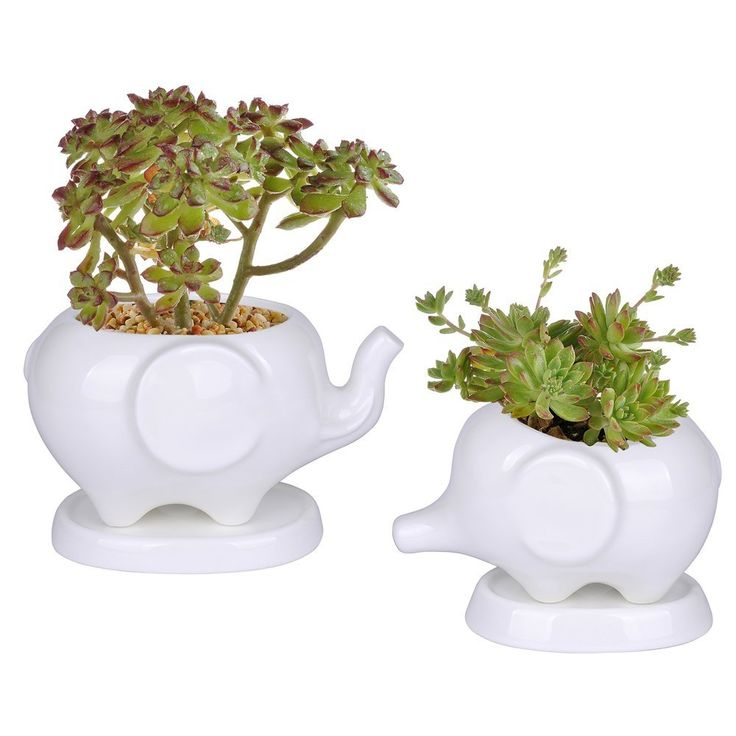 Tk Adorable Succulent Planters That Will Make It Seem Like You Can Actually  Keep A Plant Alive 2 14 Stylish Succulent Planters That Will Make It Seem  Like ...