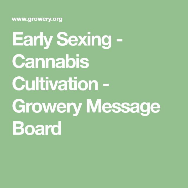 Early Sexing - Cannabis Cultivation - Growery Message Board