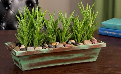 Remember the '70s, when indoor plants filled every square inch of people's homes, often hanging in macramé planters? Well, greenery is making a comeback big time, but in a stylish and modern way! Update the look of your plants by changing up the pots. Find shapely ceramic containers, woven baskets or wood-panelled boxes to show off your pretty greens. Simply place the plant's plastic pot into these vessels for a clean and tidy look.
