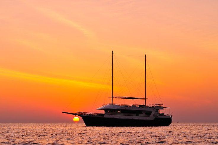 Cruise with your family and friends and enjoy amazing Maldivian sunset scenery ! http://cruise-maldives.com/cruising/1 sales@cruise-maldives.com https://www.facebook.com/backpackersmaldives #Maldives #visitMaldives #cruiseMaldives #cruise #cruising #privatecruise #holidays #sunset #specialoffer  Réservez une croisière privée entre amis ou en famille aux Maldives et profitez de la beauté de nos couchers de soleil! http://cruise-maldives.com/cruising/1…