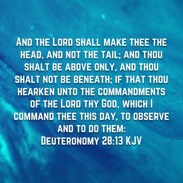 Pin by Skye December on FAITH.  | Trust god, King james bible, Word of god