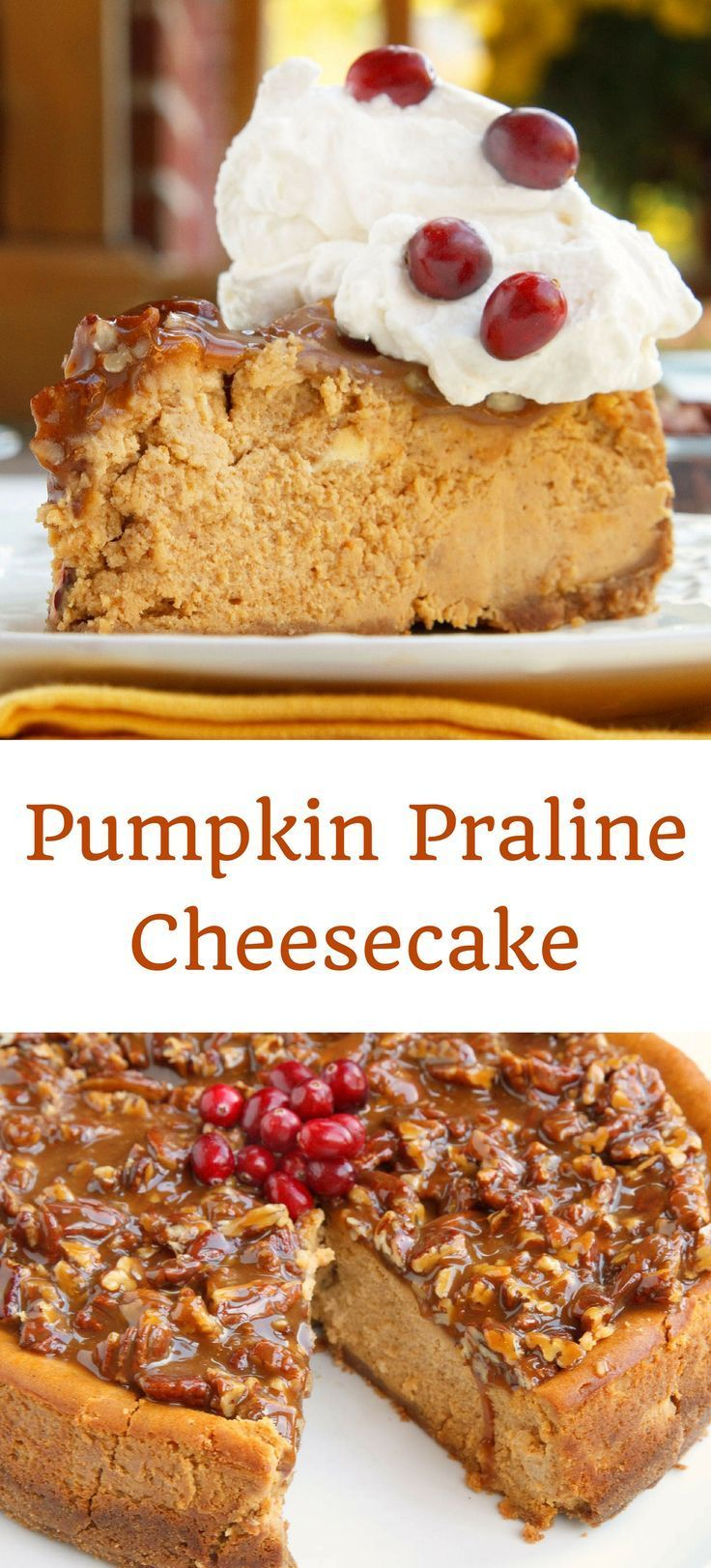 Pumpkin Praline Cheesecake Recipe. Perfect for your Thanksgiving or ...