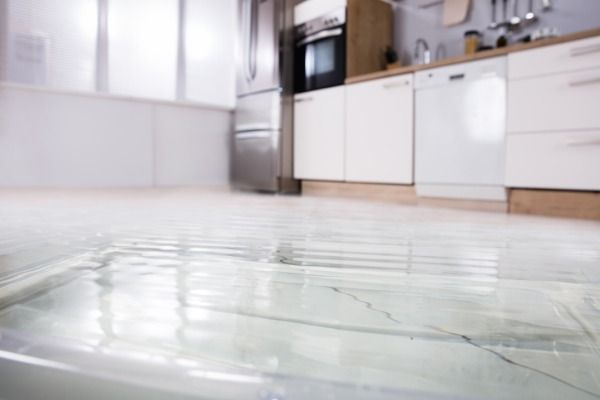 Protect Your Home From Water Damage Dishwasher Leaking Leak