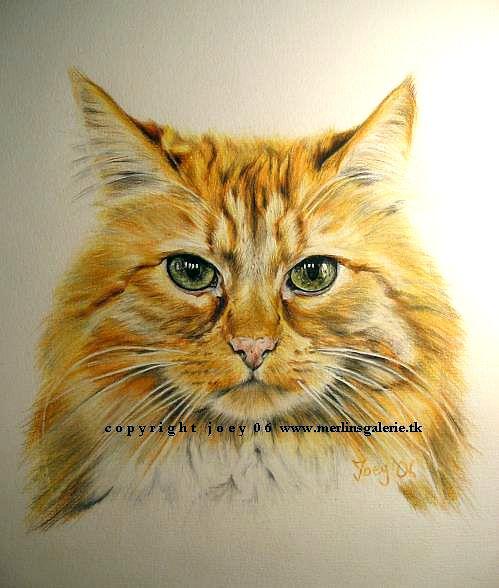 Eine Katze zeichnen mit Buntstiften                                                                                                                                                                                 Mehr