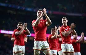 Image result for welsh rugby fans