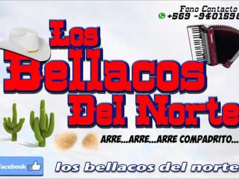 "LOS BELLACOS DEL NORTE ""MIX TEMERARIOS"" - YouTube"
