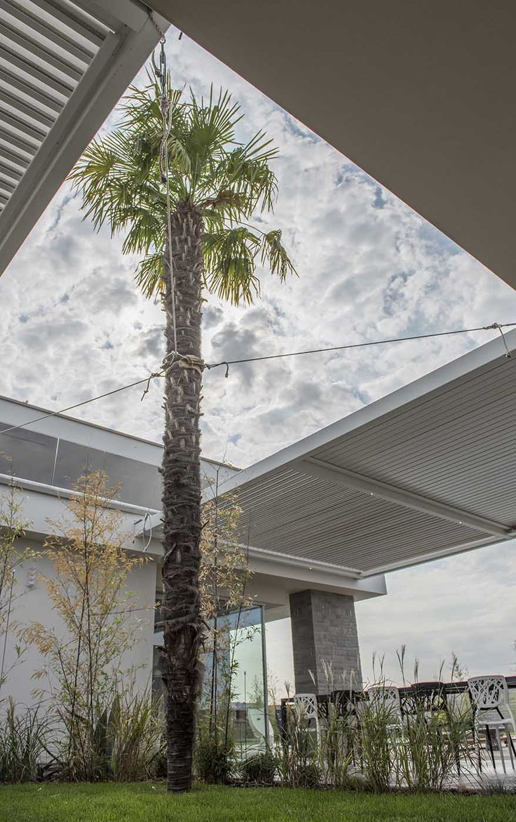 Oltre 25 fantastiche idee su giardini moderni su pinterest for Come costruire un capannone moderno