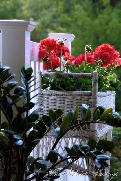 554 Best Images About Red Geranium Cottage On Pinterest