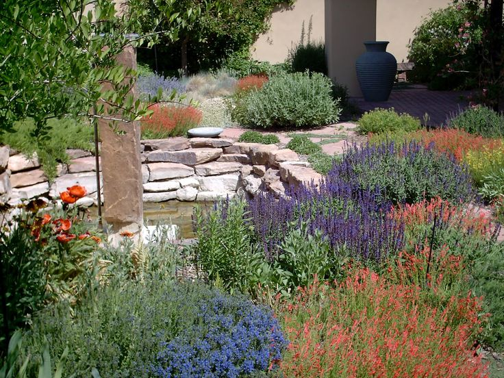 53 best images about zeriscaping ideas on pinterest for Garden design xeriscape