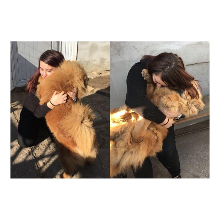 Love 💗