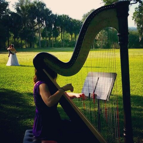 don't you love this?! :) wedding ceremony harp music in Lakeland Tampa Bay Florida