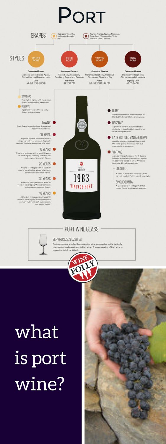 Learn The Basics of Port Wine.