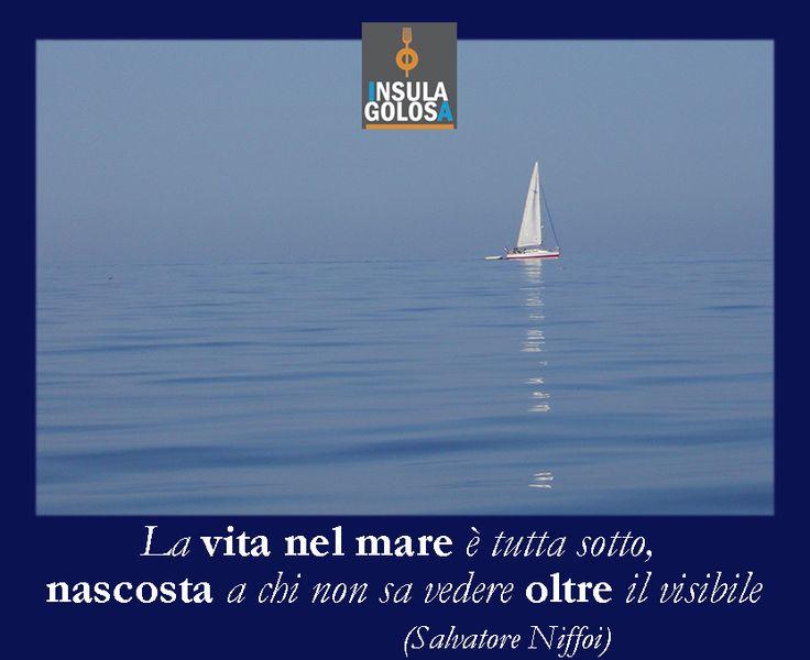 La vita nel mare è tutta sotto, nascosta a chi non sa vedere oltre il visibile (Salvatore Niffoi)