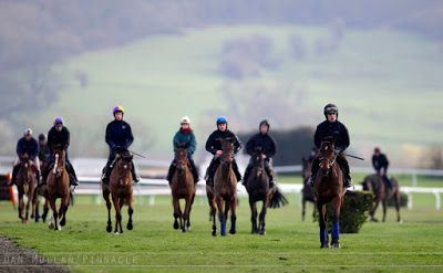 Racecourse Website Directory : Your Guide to the Cheltenham Festival 2017