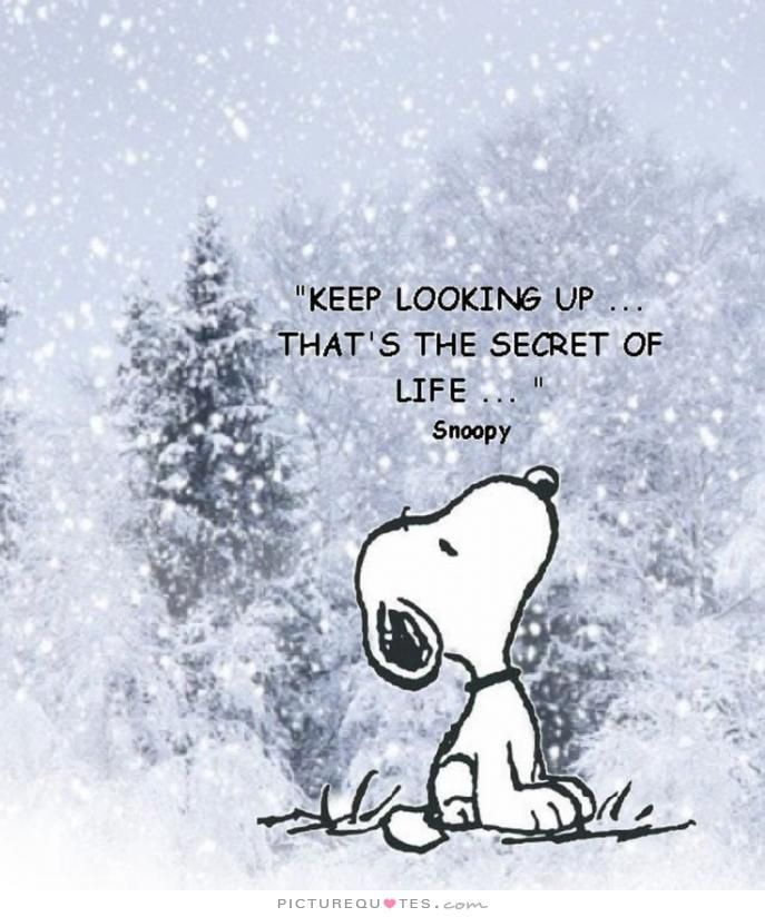 Keep looking up...that's the secret of life. Picture Quotes.