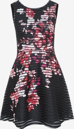 Kleid 'PRNTD THCKTHN SKTR' von Lipsy. Schnelle und kostenlose Lieferung. 100 Tage Rückgaberecht. Im Angebot!