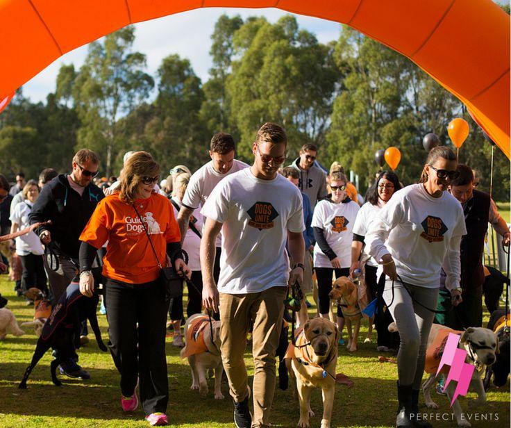Guide Dogs Australia / Dog Unite Walk 2015, Perfect Events