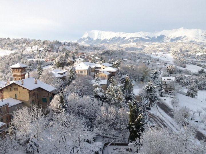 FORCE- Ascoli Piceno