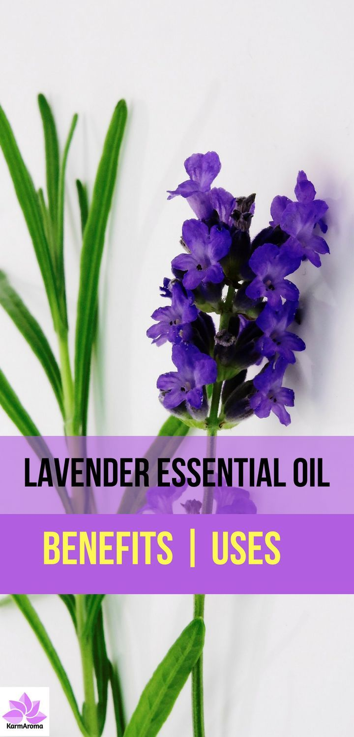 The health benefits of lavender essential oil include its ability to eliminate nervous tension, relieve pain, disinfect the scalp and skin, enhance blood circulation and treat respiratory problems.