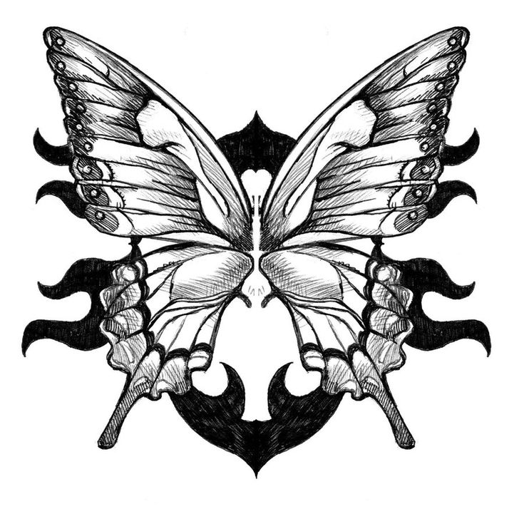 25 best ideas about butterfly wing tattoo on pinterest for Cool drawings of butterflies