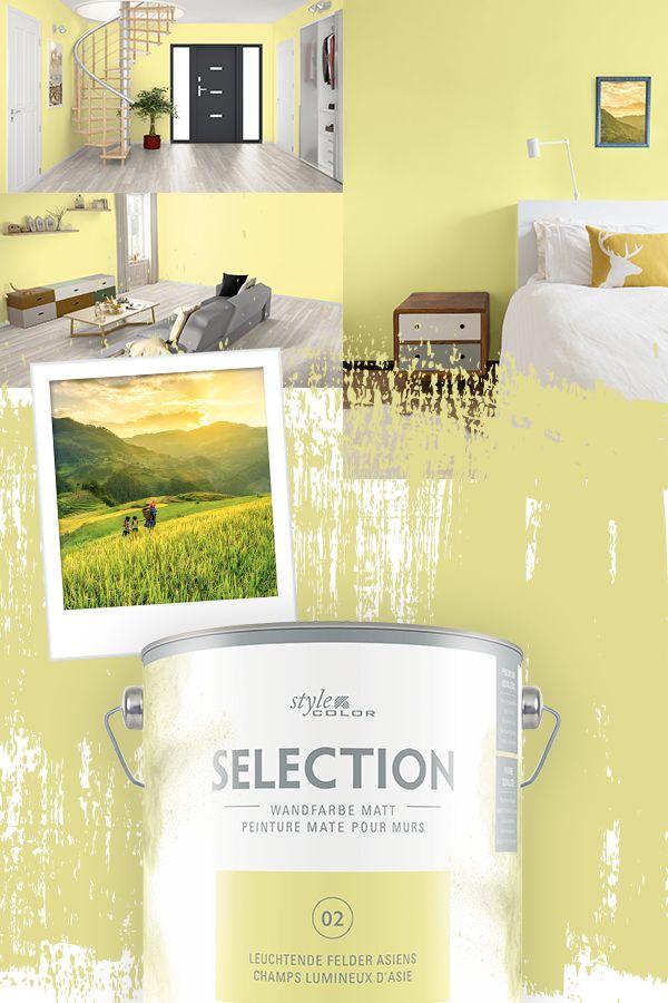 premium wandfarbe stylecolor selection farbton 02. Black Bedroom Furniture Sets. Home Design Ideas