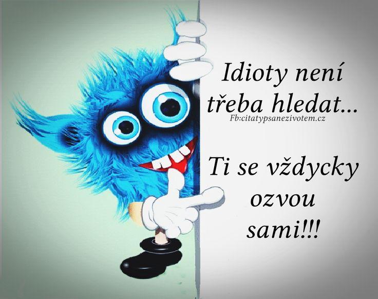 Idioty není třeba hledat... Ti se vždycky ozvou sami!!!