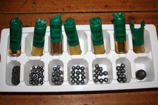 What is the best shotgun ammo for home defense?