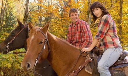 Centre Equestre du GENETEY à Saint Martin de Boscherville : Jusqu'à 1 an de leçons de poney: #SAINTMARTINDEBOSCHERVILLE 9.99€ au lieu de…