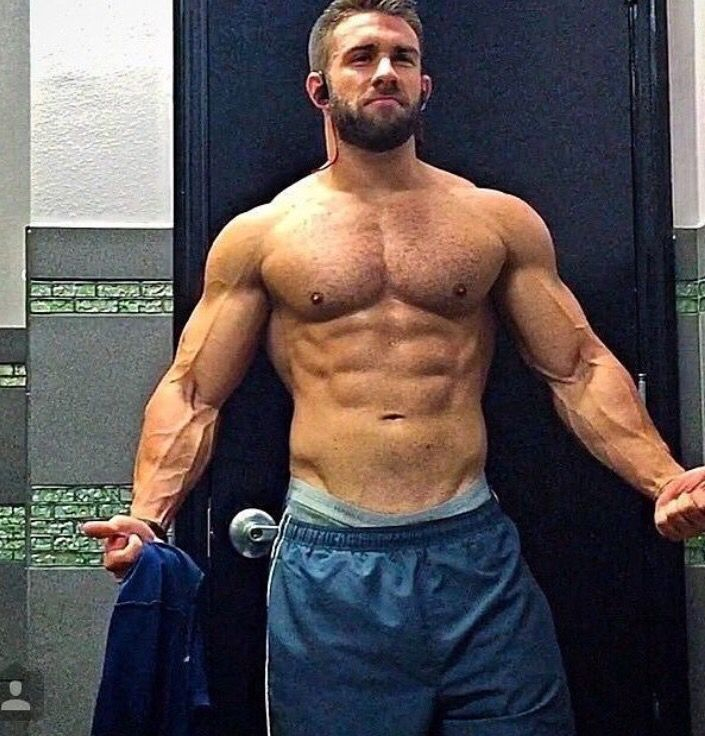 perfect body bear