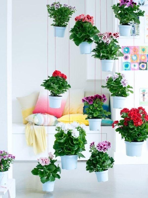 Mejores 72 im genes de flores en pinterest arreglos for Jardines decoraciones plantas