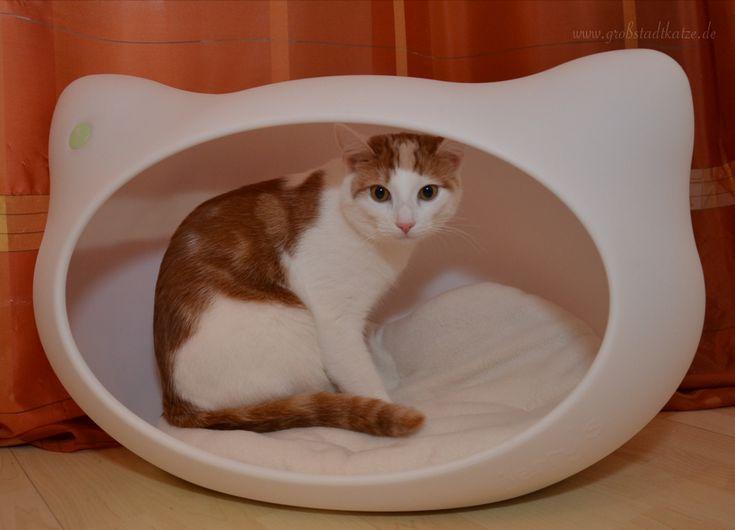 Katzenhöhle Katzenkopf-Design von jerry's