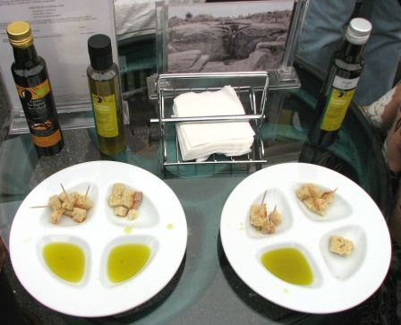 Tasting different types of olive oil - Portugal