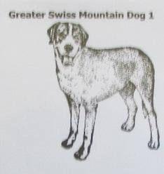 Custom Handmade Greater Swiss Mountain Dog Natural Stone
