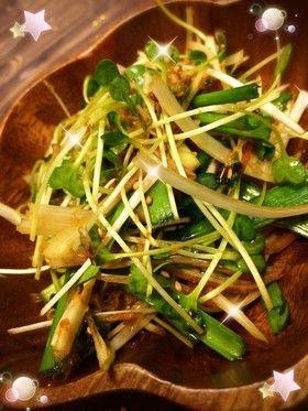 貝割れ大根、ネギ、ニラ、みょうがのサラダ