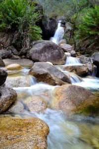 Parks Victoria - Mount Buffalo National Park ~ Lady Baths Falls
