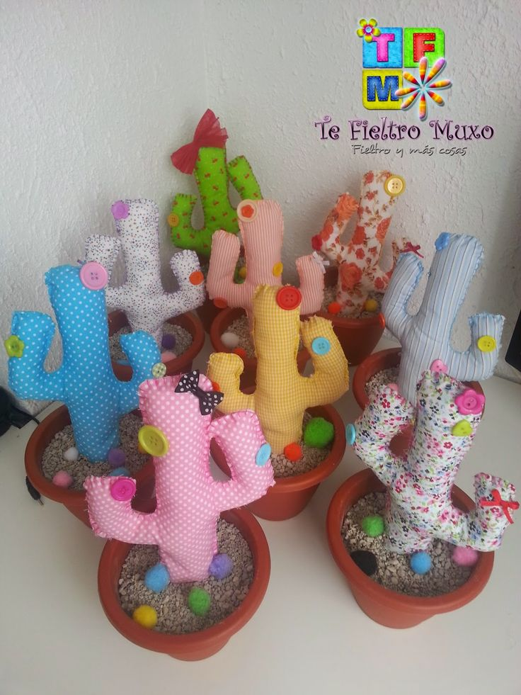 Más cactus de Tela
