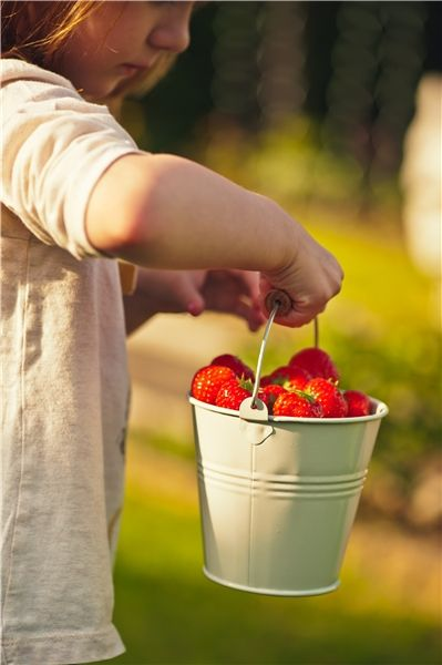 Pinching strawberries