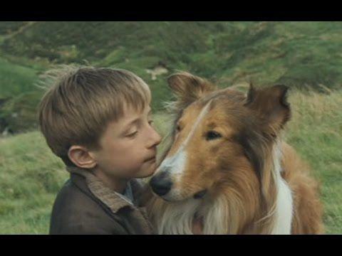 Lassie (2005) - teljes film magyarul