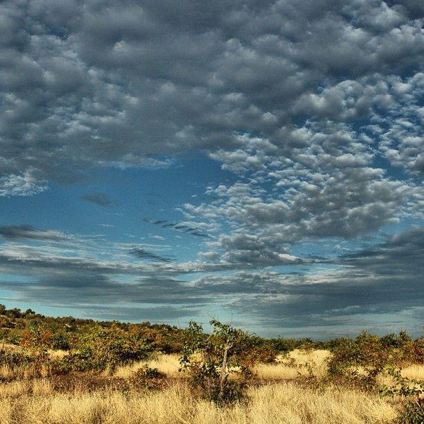 big african sky botswana