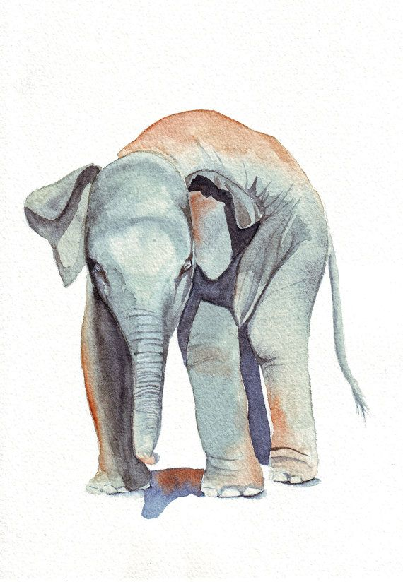 Reminds me of @prettystuff :)     Elephant Painting  print of watercolor painting