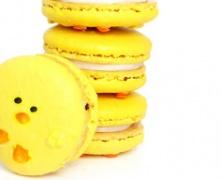 Easter / Pasen - Piepkuiken macarons recept