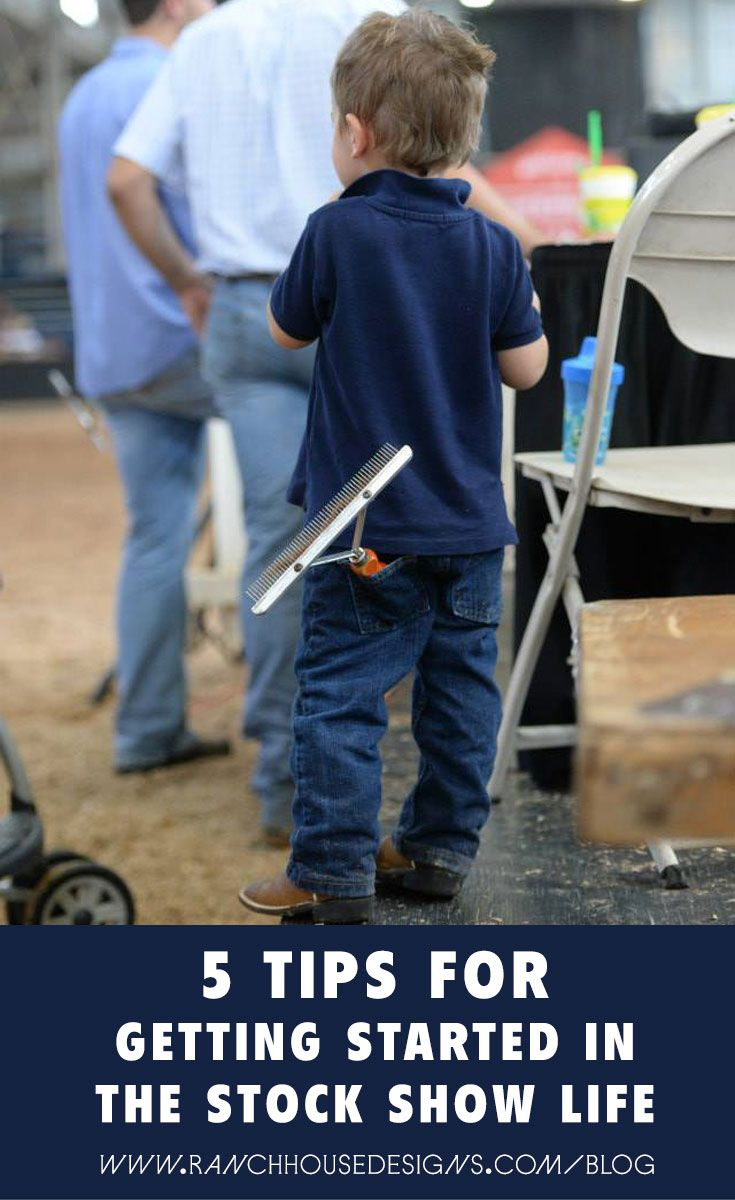 5 Tips For Getting Started In The Stock Show Life - Ranch House Designs Blog