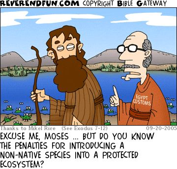 F Ff C F C F B Christian Cartoons Christian Humor