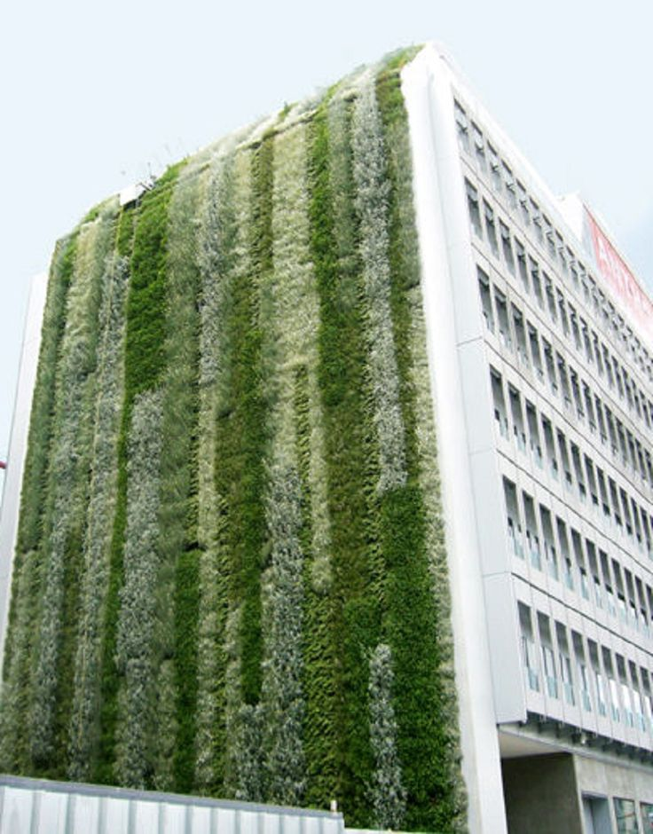 Outdoor green wall - CANEVAFLOR®
