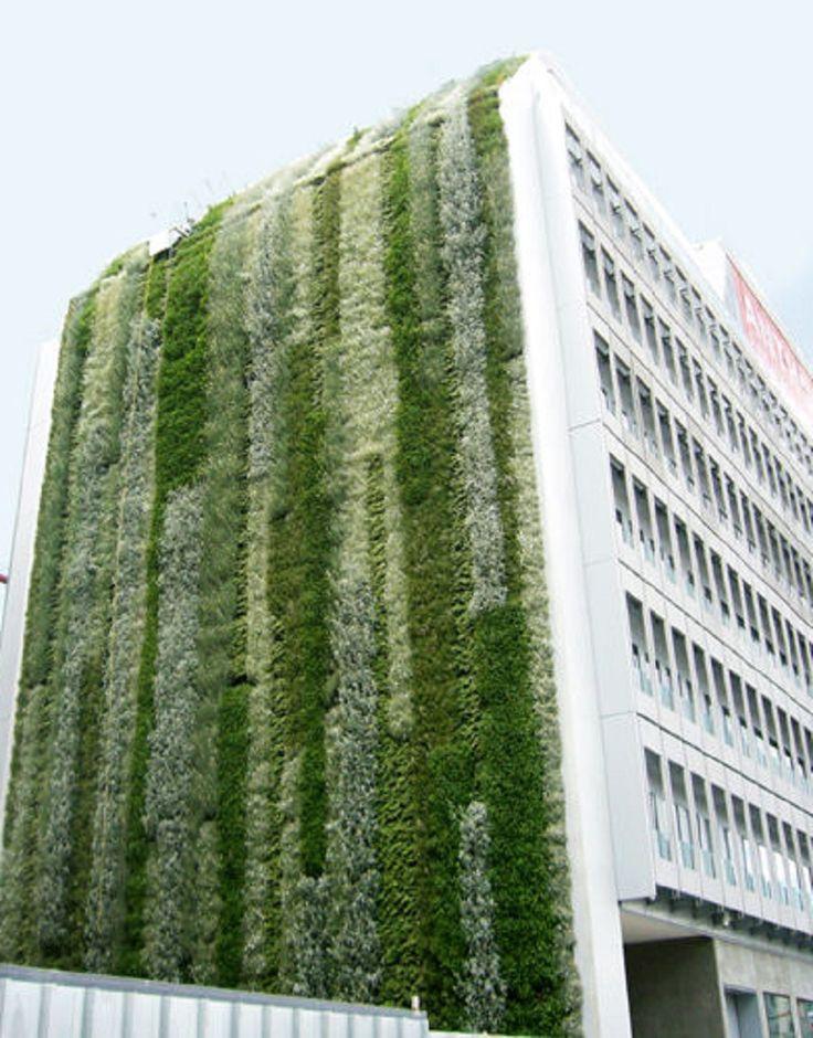 Outdoor green wall - CANEVAFLOR®