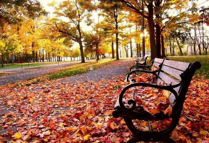 O outono na Serra Gaúcha!  Deu vontade de arrumar as malas e pegar a estrada? #DestinosEssenciais