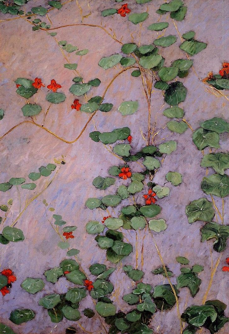 Gustave caillebotte french 1848 1894 nasturtiums 1892oil on canvasvia la