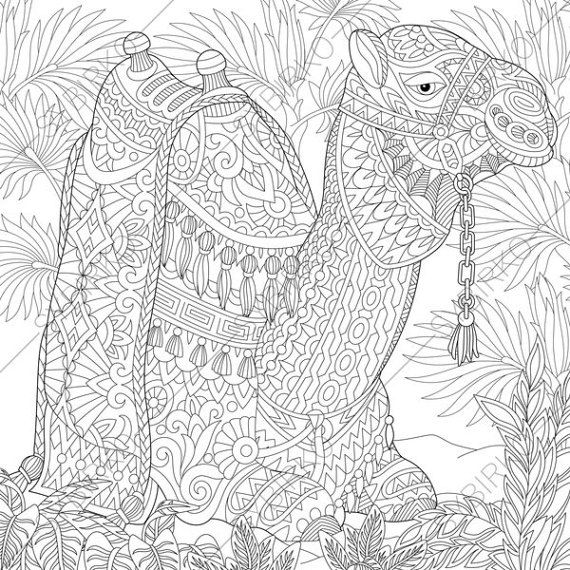2 Coloring Pages Of Camel From ColoringPageExpress Shop Hand Drawn Illustrations Both For Adults And