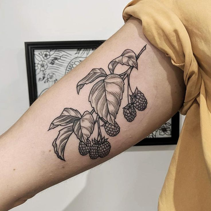 Black and grey raspberry branch tattoo on the right bicep   – Tattoo